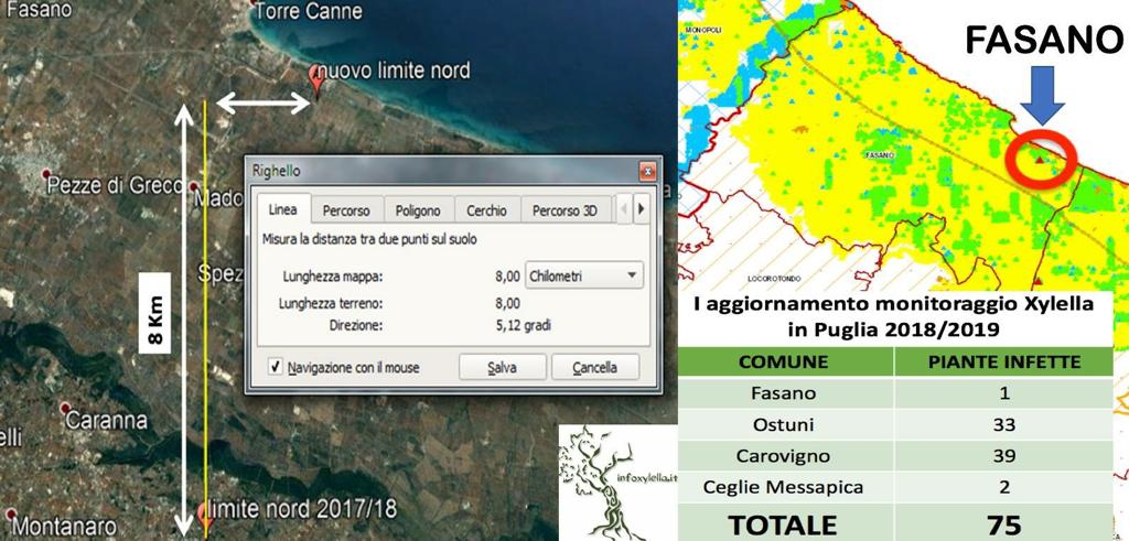 Mappa Xylella Puglia.Monitoraggio Xylella Archivi Cno